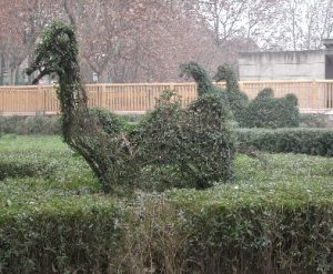 bushes cut as camels